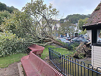 Pictured: A tree has fallen inside a playground in Mumbles village near Swansea, Wales, UK. <br /> Re: Homes have been flooded and there is widespread travel disruption as Storm Francis brings heavy rain and 70mph winds to Wales.