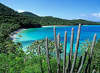 Gibney and Hawksnest Beach<br /> Virgin Islands National Park<br /> St. John<br /> U.S. Virgin Islands