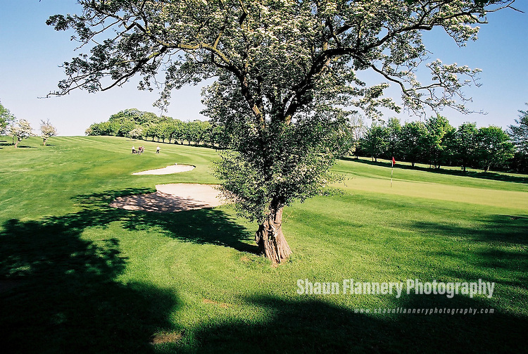 Pix: Shaun Flannery/shaunflanneryphotography.com...COPYRIGHT PICTURE>>SHAUN FLANNERY>01302-570814>>07778315553>>..18th May 2004..............Hickleton Golf Club, Lidgett Lane, Hickleton, Doncaster, DN5 7BE..Golf Course - 18th green