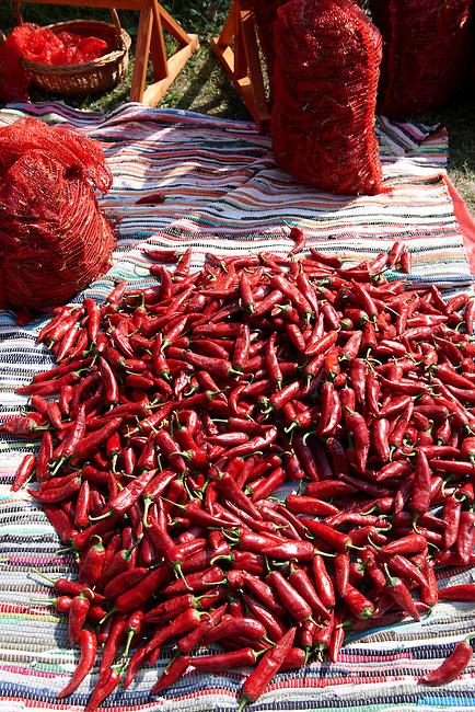 chilis being dried at Hungary's paprika capital - Kalacsa, Hungary.