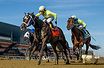 OZONE PARK, NY - JANUARY 30: Sunny Ridge #7, ridden by Manuel Franco, wins the Withers Stakes on Withers Stakes Stakes Day at Aqueduct Race Track in Ozone Park, New York on January 30, 2016. (Photo by Scott Serio)