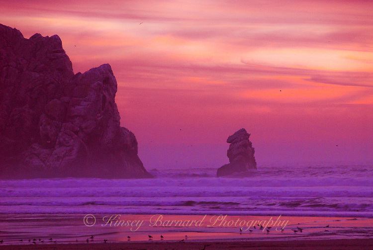 """""""MORRO MAGIC""""<br /> <br /> Pink an purple hues color the evening sky at Morro Bay California <br /> <br /> The original giclee on canvas is available for purchase."""