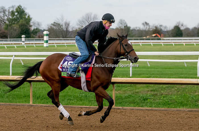 November 1, 2020: March To The Arch, trained by trainer Mark E. Casse, exercises in preparation for the Breeders' Cup Mile at Keeneland Racetrack in Lexington, Kentucky on November 1, 2020. Karina Serio/Eclipse Sportswire/Breeders Cup /CSM