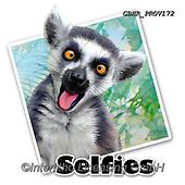 Howard, SELFIES, paintings+++++,GBHRPROV172,#Selfies#, EVERYDAY