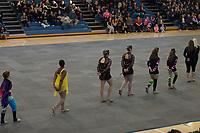 Lower Dauphin show