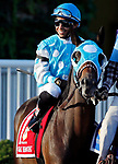 ARLINGTON HEIGHTS, IL - AUGUST 12: Oak Brook #1, ridden by Santo Sanjur, during the post parade beduring the post parade before the Arlington Million on Arlington Million Day at Arlington Park on August 12, 2017 in Arlington Heights, Illinois. (Photo by Jon Durr/Eclipse Sportswire/Getty Images)