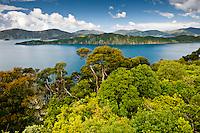 Splendid views from Motuara Island toward the Long Island - Marlborough Sounds, Marlborough, New Zealand
