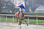 February 27, 2021: Essential Quality #1 ridden by Luis Saez wins the Southwest Stakes (Grade 3), a 'Road to the Kentucky Derby' points race, for trainer Brad Cox at Oaklawn Park in Hot Springs, Arkansas. Ted McClenning/Eclipse Sportswire/CSM