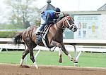 Kentucky Derby contender Carpe Diem breezes under jockey John Velazquez