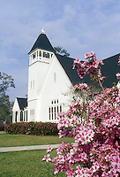 One hundred year old white clapboard Presbyterian church in Sommerville South Carolina beautifully set off with azaleas bloming in spring