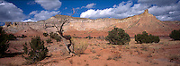 Georgia O'Keeffe Country near Ghost Ranch, New Mexico. Photograph by Peter E. Randall