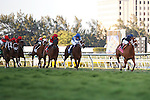 Inspired with jockey John Velazquez up is clear of the field on her way to winning the  Ladies Turf Sprint, Gulfstream Park. Hallandale Beach, Florida. 03-04-2012
