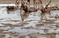 5. Matschfussball-Meisterschaft in Woellnau. Auf zwei gefluteten Aeckern wird alljaehrlich in Wöllnau (Woellnau) bei Eilenburg der Deutsche Matschfussball-Meister gesucht. Waehrend bei den Herren zehn Teams um die Schale kaempften, stritten bei den Damen vier Teams um die Ballnixe.  Ein feutfroehliches und dreckiges Spektakel, dass gut 1000 Besucher in die Duebener Heide gelockt hat. Am Ende durften bei den Herren das City Bootcamp jubeln. Sie verteidigten den Pott, bezwangen im Finale Battaune mit 3:2. Bei den Damen siegten die Volleyballerinnen aus Priestäblich (Priestaeblich).  im Bild:  Gestoert aber geil, die Maedels machen ihrem Namen alle Ehre.   Foto: Alexander Bley