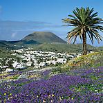 Spain, Canary Island, Lanzarote, view at Haria | Spanien, Kanarische Inseln, Lanzarote, Blick auf Haria
