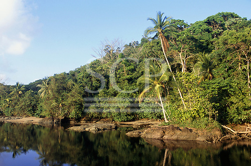 Osa Peninsula, Costa Rica. Lagoon on the beach at Rio Claro with forest coming down to the water, rocks in the sand.