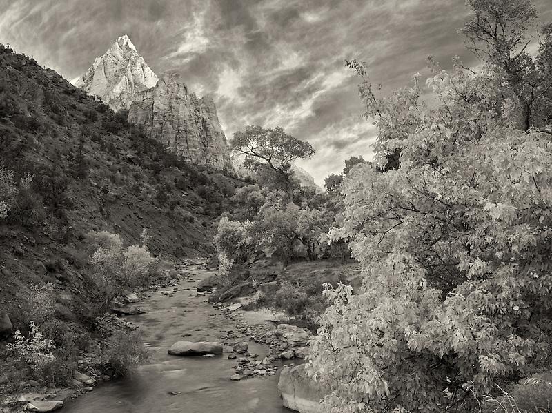 Virgin River and Three Patriarchs. Zion National Park, Utah.
