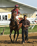 Last Gunfighter with Javier Castellano  win the 43rd running 0f the Grade III Pimlico Special Stakes for 3-year olds & up, going 1 3/16 mile, at Pimlico Race Course.  Trainer Chad Brown.  Owners John D. Gunther
