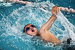 SNM - Nel/Tas Primary School Swim Champs