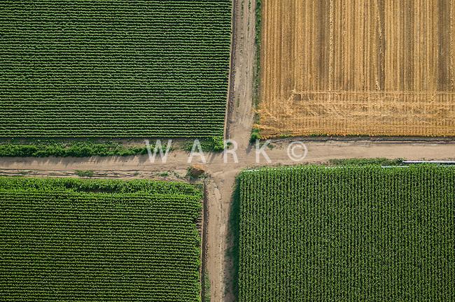 Farmland. Fields of Pueblo County, Colorado.  July 2009