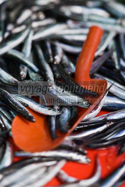 Europe/Turquie/Istanbul : Le Bazar aux épices - détail sardines