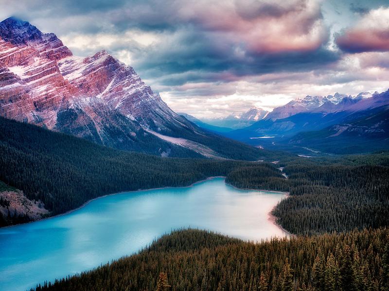 Peyto Lake at sunrise. Banff National Park, Alberta Canada.