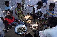 Afrique/Afrique de l'Ouest/Sénégal/Basse-Casamance/Ourong : Femmes ouvrant les huîtres de Paletuvie dans les bolons