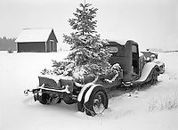 Christmas decorations on old truck with snow. Near Troy, Oregon