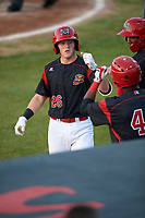 Batavia Muckdogs catcher Jared Barnes (26) fist bumps Brayan Hernandez (41) after hitting a home run during a game against the Auburn Doubledays on August 26, 2017 at Dwyer Stadium in Batavia, New York.  Batavia defeated Auburn 5-4.  (Mike Janes/Four Seam Images)