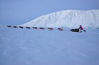 Dee Dee Jonrowes team on the trail leaving Rainy Pass Chkpt 2006 Iditarod Alaska Range Rainy Pass Alaska