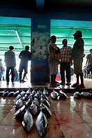 Malediven,<br /> Male, Fischmarkt, kleine Thunfische,<br /> Republik Malediven, 03.2011<br /> <br /> (Bildtechnik: sRGB, <br /> 34.48 MByte vorhanden)<br /> <br /> English: Maldives, Male, fish market, tuna, catch, food, customers, March 2011