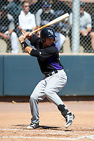 Colorado Rockies minor league catcher Will Swanner #39 during an instructional league game against the San Francisco Giants at the Salt River Flats Complex on October 4, 2012 in Scottsdale, Arizona.  (Mike Janes/Four Seam Images)