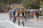 The peloton led by Jumbo-Visma during Stage 10 of La Vuelta d'Espana 2021, running 189km from Roquetas de Mar to Rincón de la Victoria, Spain. 24th August 2021.     <br /> Picture: Luis Angel Gomez/Photogomezsport   Cyclefile<br /> <br /> All photos usage must carry mandatory copyright credit (© Cyclefile   Luis Angel Gomez/Photogomezsport)