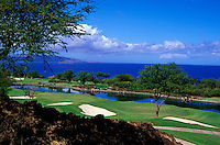 Hole Nos. 10 and 17 of the Wailea Emerald golf course on Maui