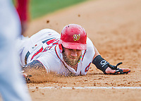 13 March 2016: Washington Nationals outfielder Bryce Harper dives safely back to first on a pick-off attempt during a pre-season Spring Training game against the St. Louis Cardinals at Space Coast Stadium in Viera, Florida. The teams played to a 4-4 draw in Grapefruit League play. Mandatory Credit: Ed Wolfstein Photo *** RAW (NEF) Image File Available ***