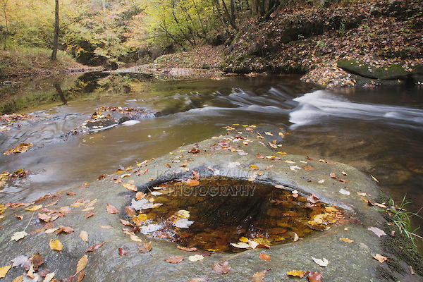 Fall leaves on rock and stream, Raven Rock State Park, Lillington, North Carolina, USA