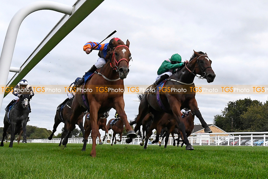 Winner of The Venture Security Handicap Stakes Molly Shaw (green) ridden by Jack Mitchell and trained by Chris Wall  during Horse Racing at Salisbury Racecourse on 11th September 2020