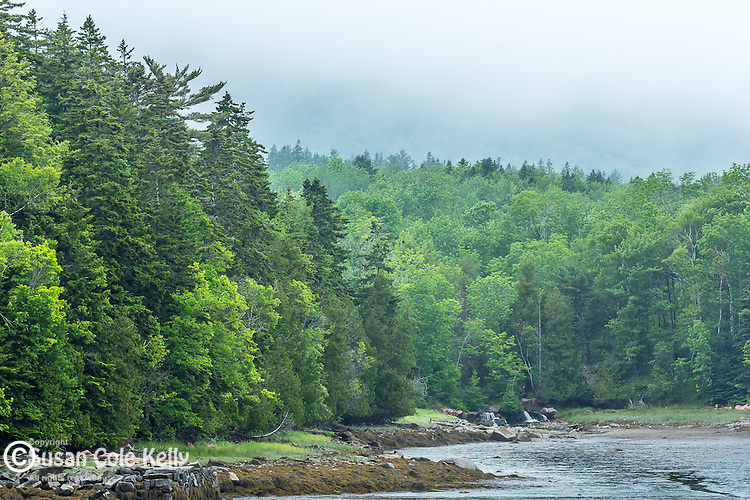 The outlet of Otter Creek in Acadia National Park, Maine, USA