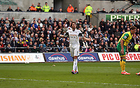 Saturday, 29 March 2014<br /> Pictured: Michu of Swansea<br /> Re: Barclay's Premier League, Swansea City FC v Norwich City at the Liberty Stadium, south Wales, UK.