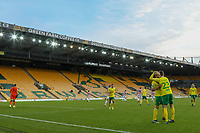 13th February 2021; Carrow Road, Norwich, Norfolk, England, English Football League Championship Football, Norwich versus Stoke City; Teemu Pukki of Norwich City celebrates his goal from the penalty spot with Kenny McLean for 4-1