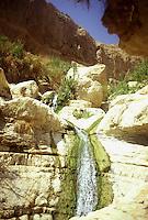 Israele: scorcio delle Cascate di David a Ein Gedi, riserva naturale sulla costa del Mar Morto.