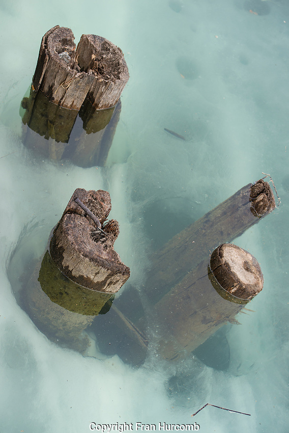 Old Pilings at Giant Mine poking through ice and water