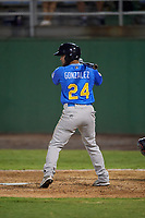 Myrtle Beach Pelicans Eric Gonzalez (24) at bat during a Carolina League game against the Potomac Nationals on August 14, 2019 at Northwest Federal Field at Pfitzner Stadium in Woodbridge, Virginia.  Potomac defeated Myrtle Beach 7-0.  (Mike Janes/Four Seam Images)
