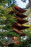 San Francisco, California - Pagoda, Japanese Tea Garden, Golden Gate Park.  The pagoda was built for the Panama-Pacific International Exhibition of 1915.