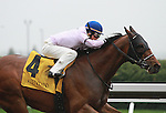 15 April 2011.  #4 Tiger Bud and Rosie Napravnik win the 6th race at Keeneland.