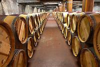 Oak barrel aging and fermentation cellar. Chateau Pichon Longueville Comtesse de Lalande, pauillac, Medoc, Bordeaux, France