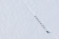 Sebastian Schnuelle runs on the swamps between Shageluk and Anvik on Friday afternoon     Iditarod 2009