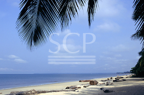 Libreville, Gabon. Beach with overhanging palm leaves.