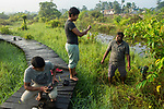 Fishing Cat (Prionailurus viverrinus) biologists, Tharindu Bandara, Anya Ratnayaka, and Maduranga Ranaweera, setting up camera traps in urban wetland, Urban Fishing Cat Project, Diyasaru Park, Colombo, Sri Lanka