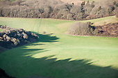 English countryside. England. Long winter shadows of trees on a field.