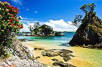 Te Puna Island - Bay of Islands, Northland, New Zealand